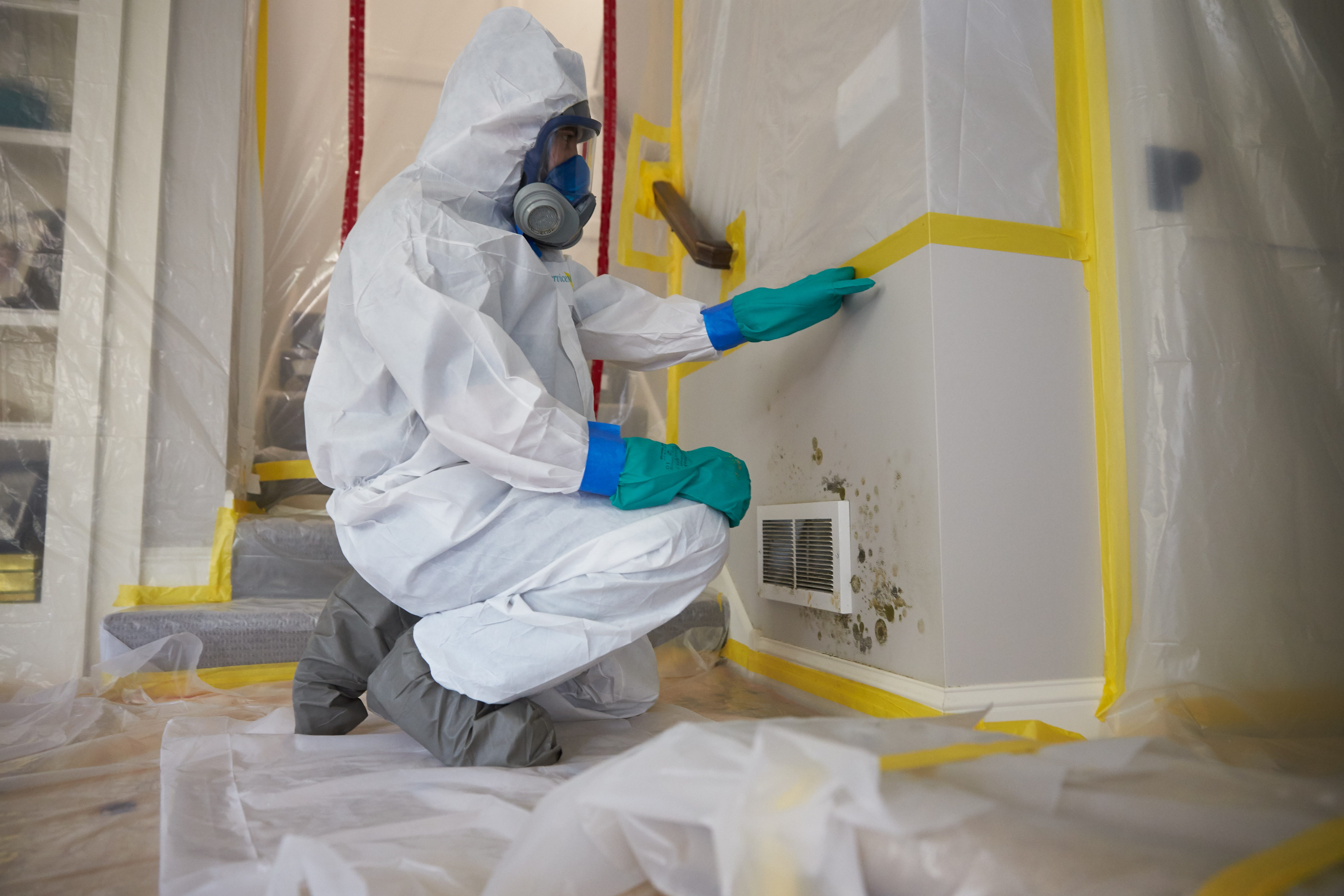 Disaster Restoration Mold Remediation